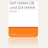 S/4 HANA Datenbank und S/4 HANA Datenmodell