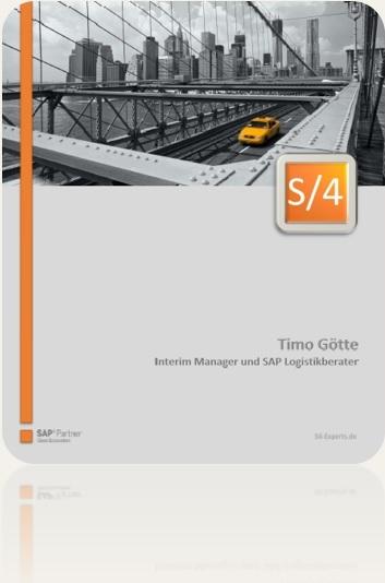 SAP S/4HANA und ERP Freiberufler Timo Götte