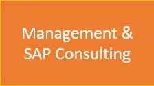 SAP S/4HANA und ERP Management und Beratung