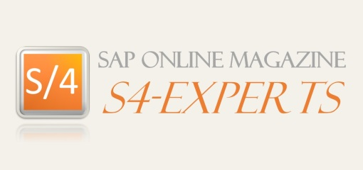 SAP Magazine S/4HANA & ERP Logistics