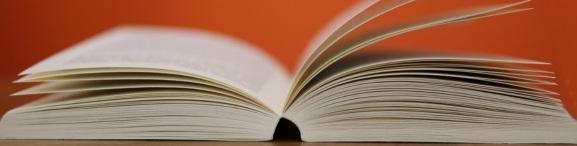 SAP Buch