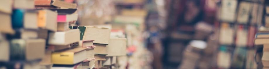 SAP Publikatinen Bücher